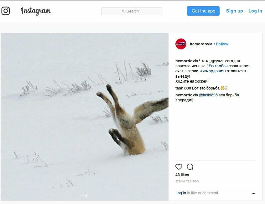 "ХК ""Тамбов"" вернул должок ""Мордовии"", фото-1, Instagramm ХК ""Мордовия"""