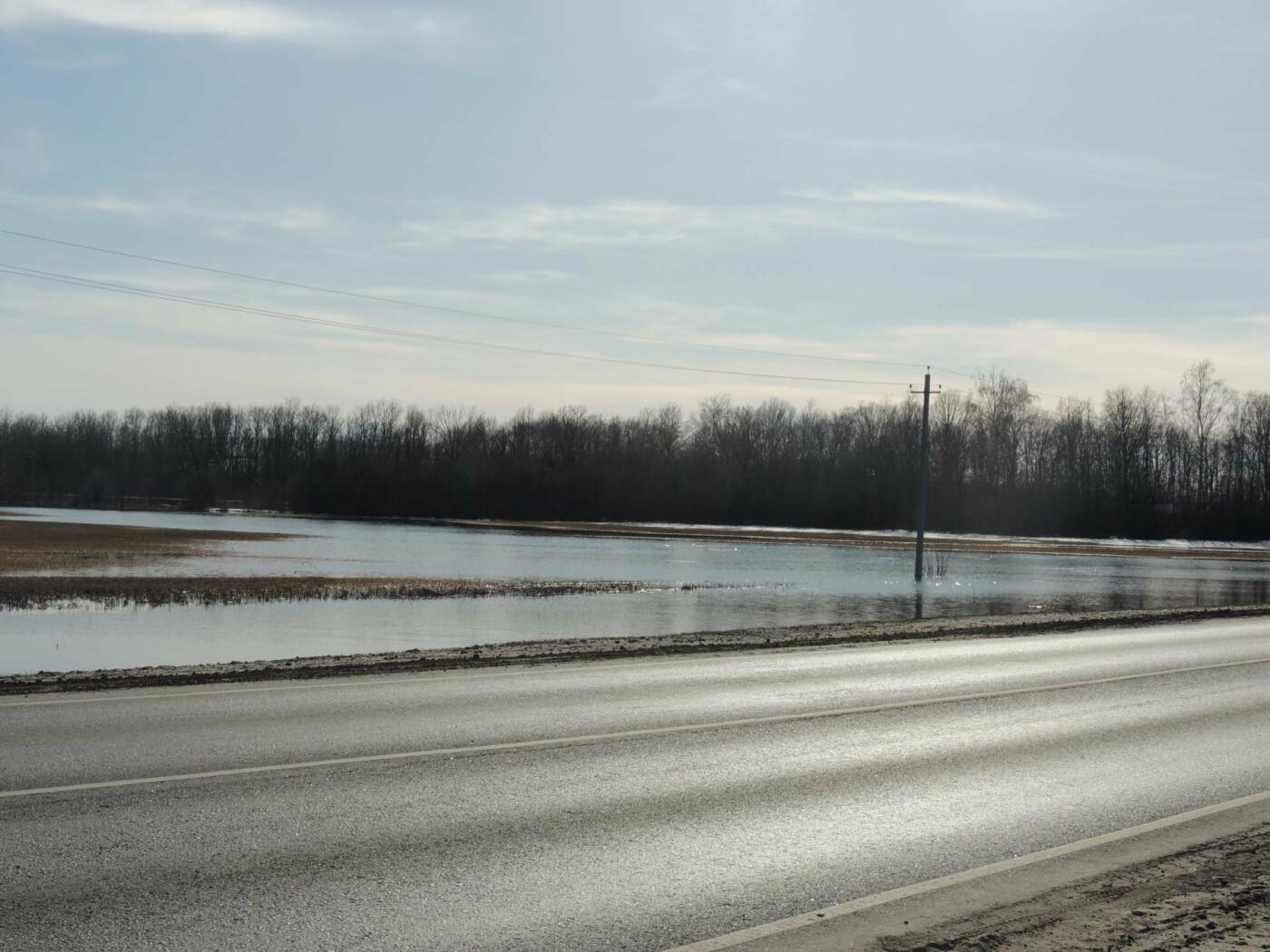 Вода отступила: дорога Тамбов — Котовск открыта, фото-2