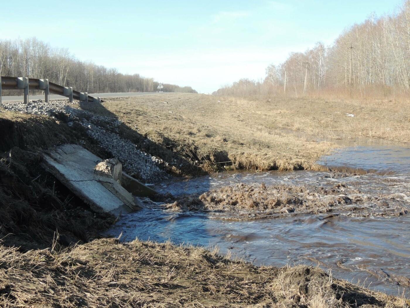 Вода отступила: дорога Тамбов — Котовск открыта, фото-3