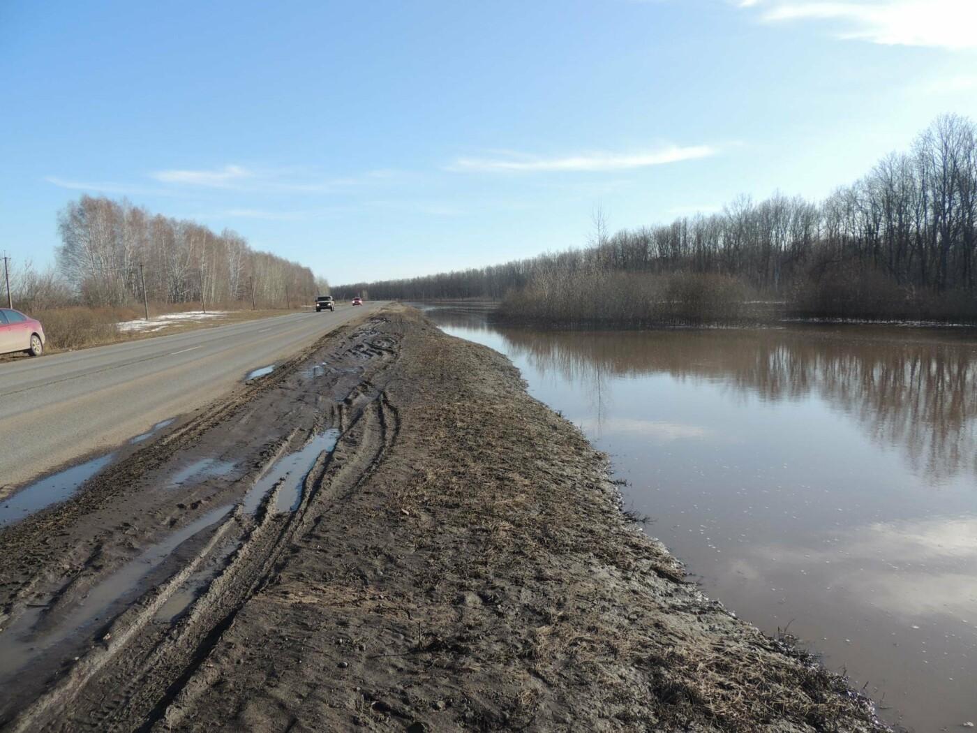 Вода отступила: дорога Тамбов — Котовск открыта, фото-1