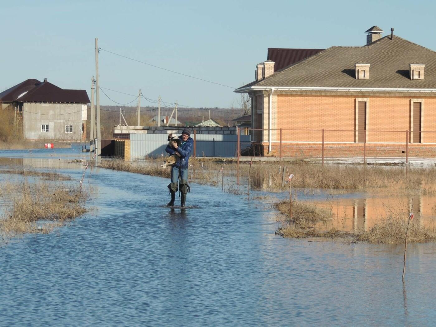Тамбовские села отрезаны от внешнего мира паводком, фото-2