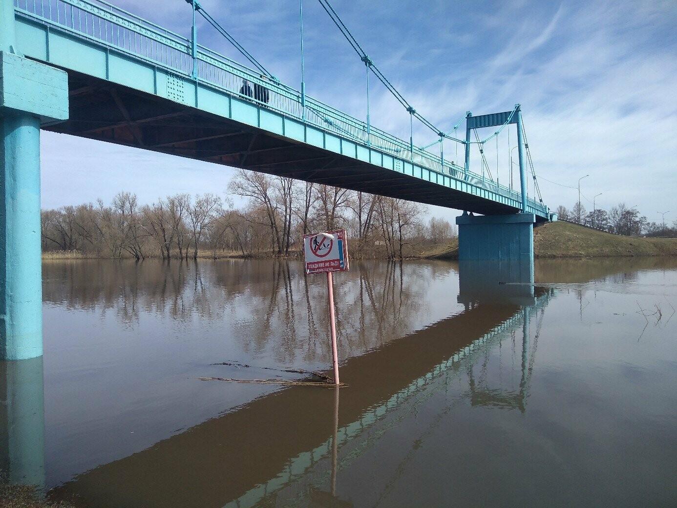 Паводок в Тамбовской области не отступает, фото-2