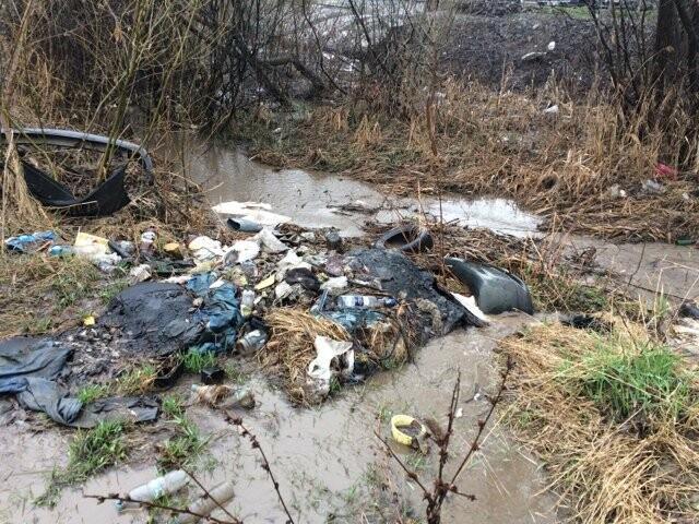 Тамбовский Студенец официально признали грязным, фото-2
