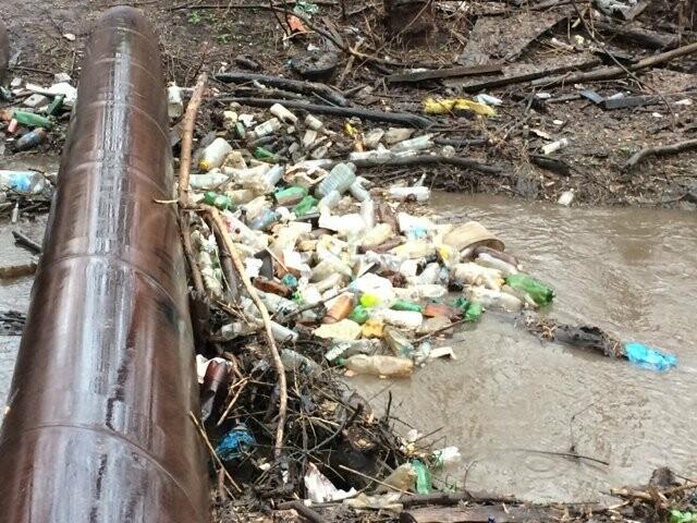 Тамбовский Студенец официально признали грязным, фото-1