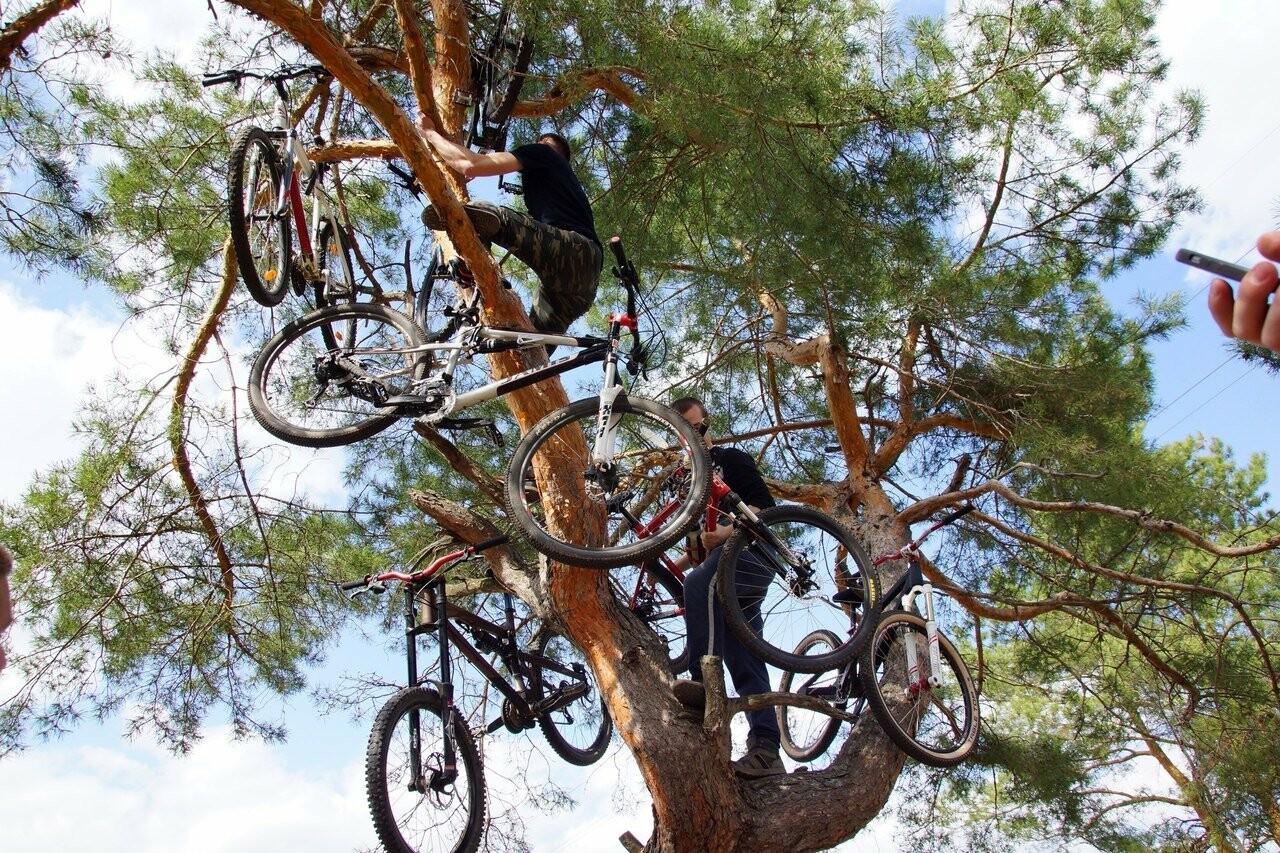 Тамбовские велосипедисты открыли сезон у подножия крутых оврагов, фото-5