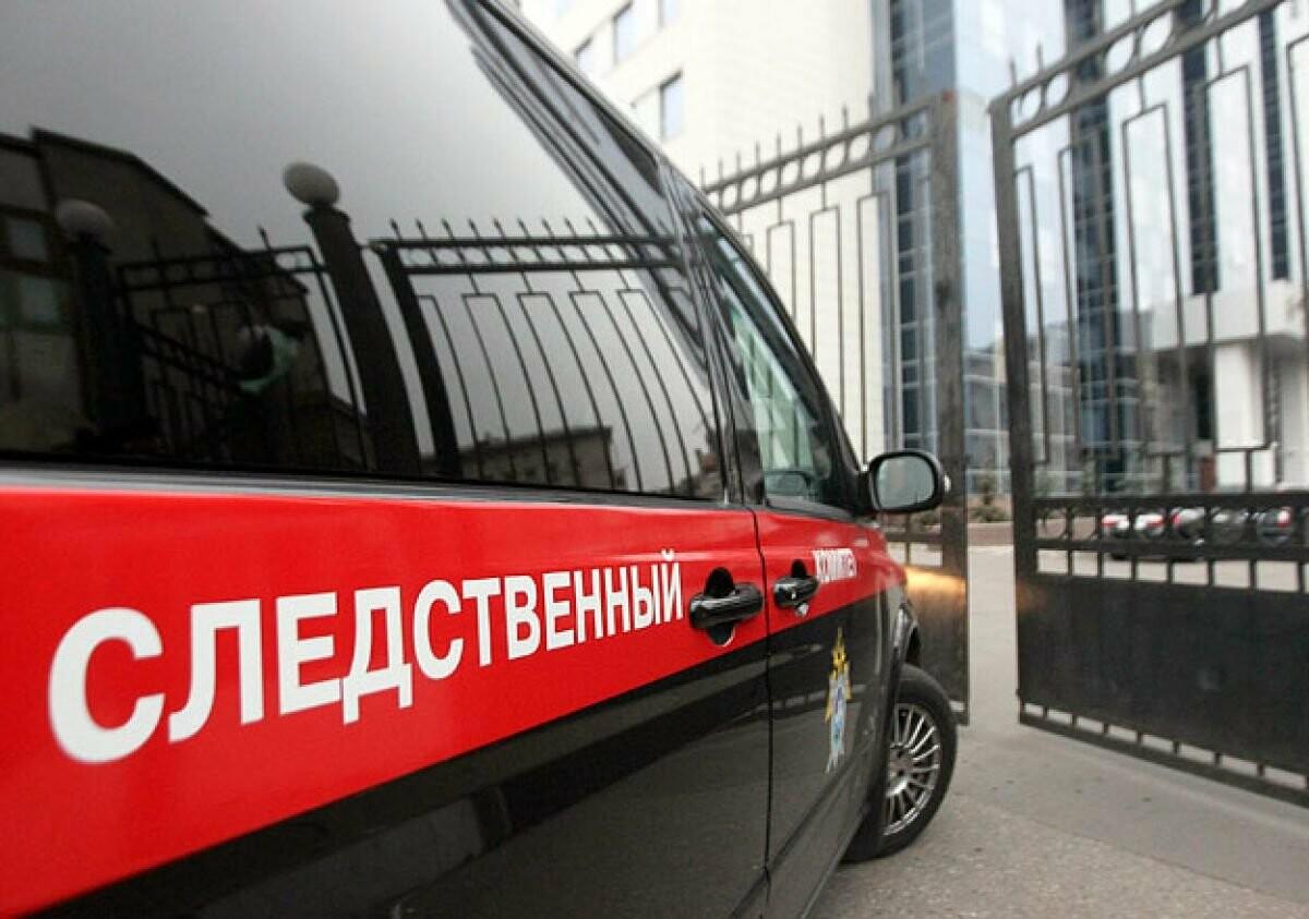 Тамбовчанин убил родных бабушку и дедушку: получил 19 лет, фото-1