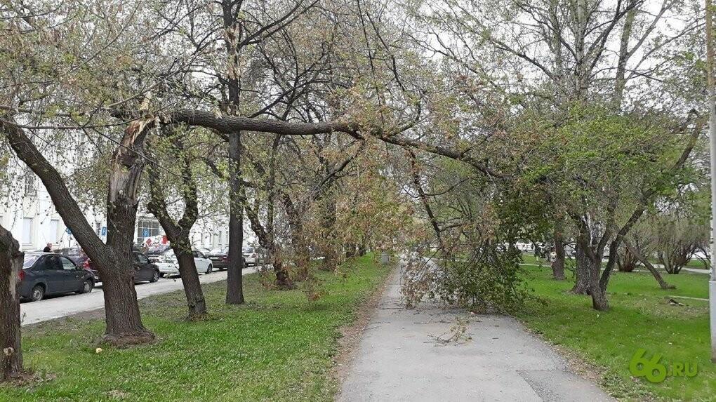 Ураган с Урала пришел в Тамбов?, фото-1