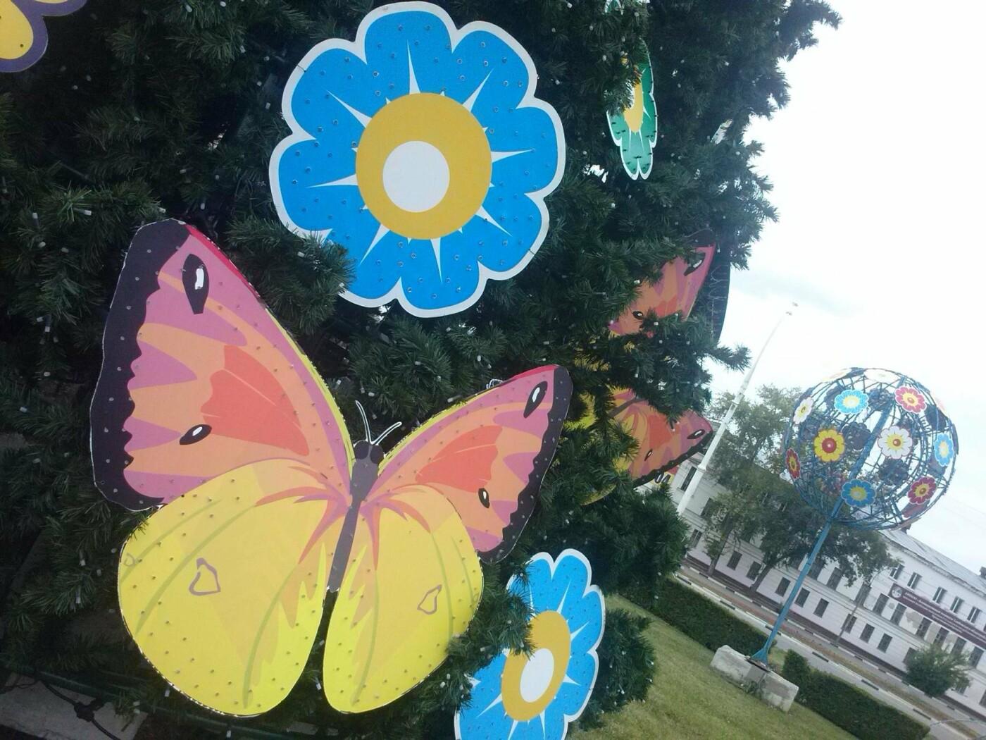 Елку ко Дню города в Тамбове ставить не будут, фото-3
