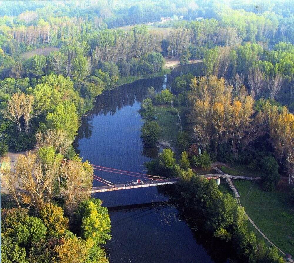 На расчистку реки Лесной Воронеж потребуется несколько лет, фото-1