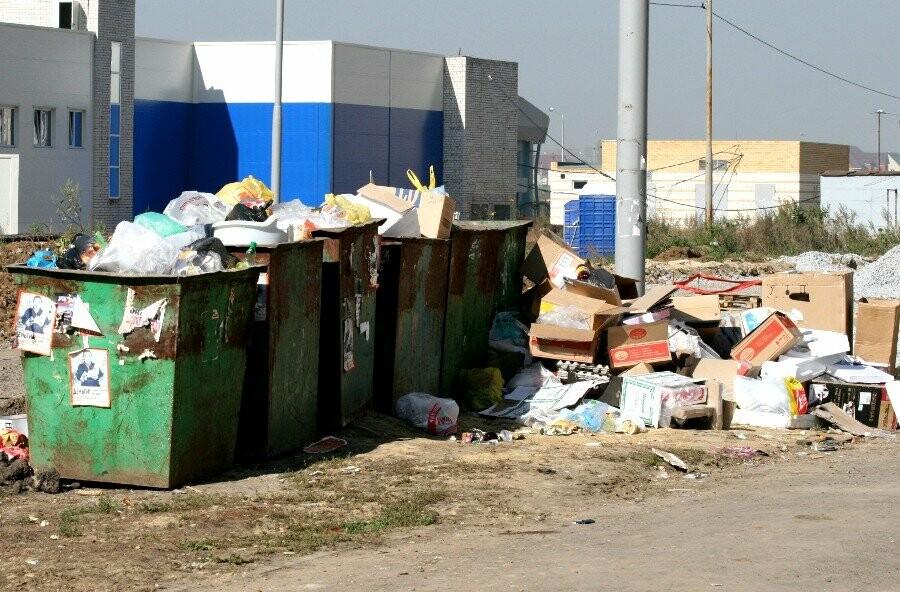 В Тамбове будут убирать мусор у контейнерных площадок, фото-1