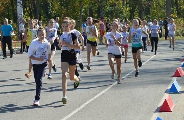 В Тамбовской области на спорт потратили 830 миллионов, фото-1