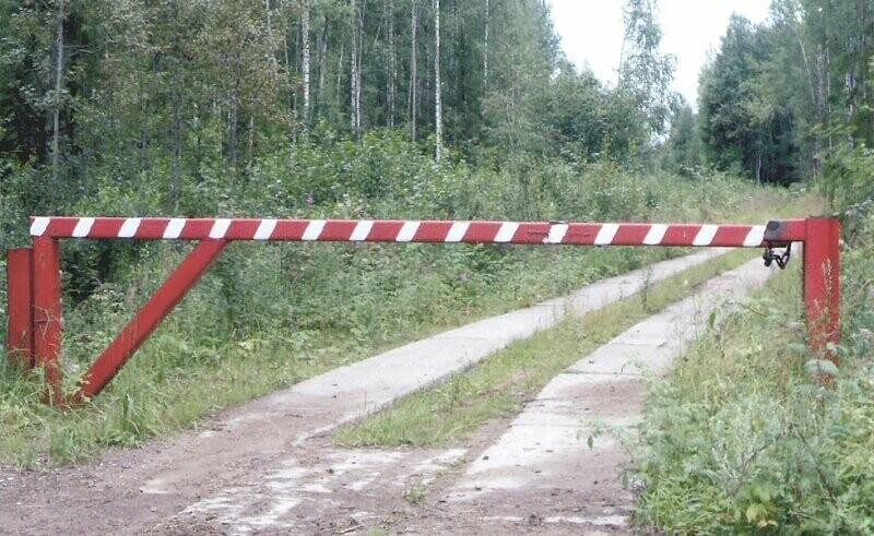 Тамбовчан не пустят в леса, фото-1