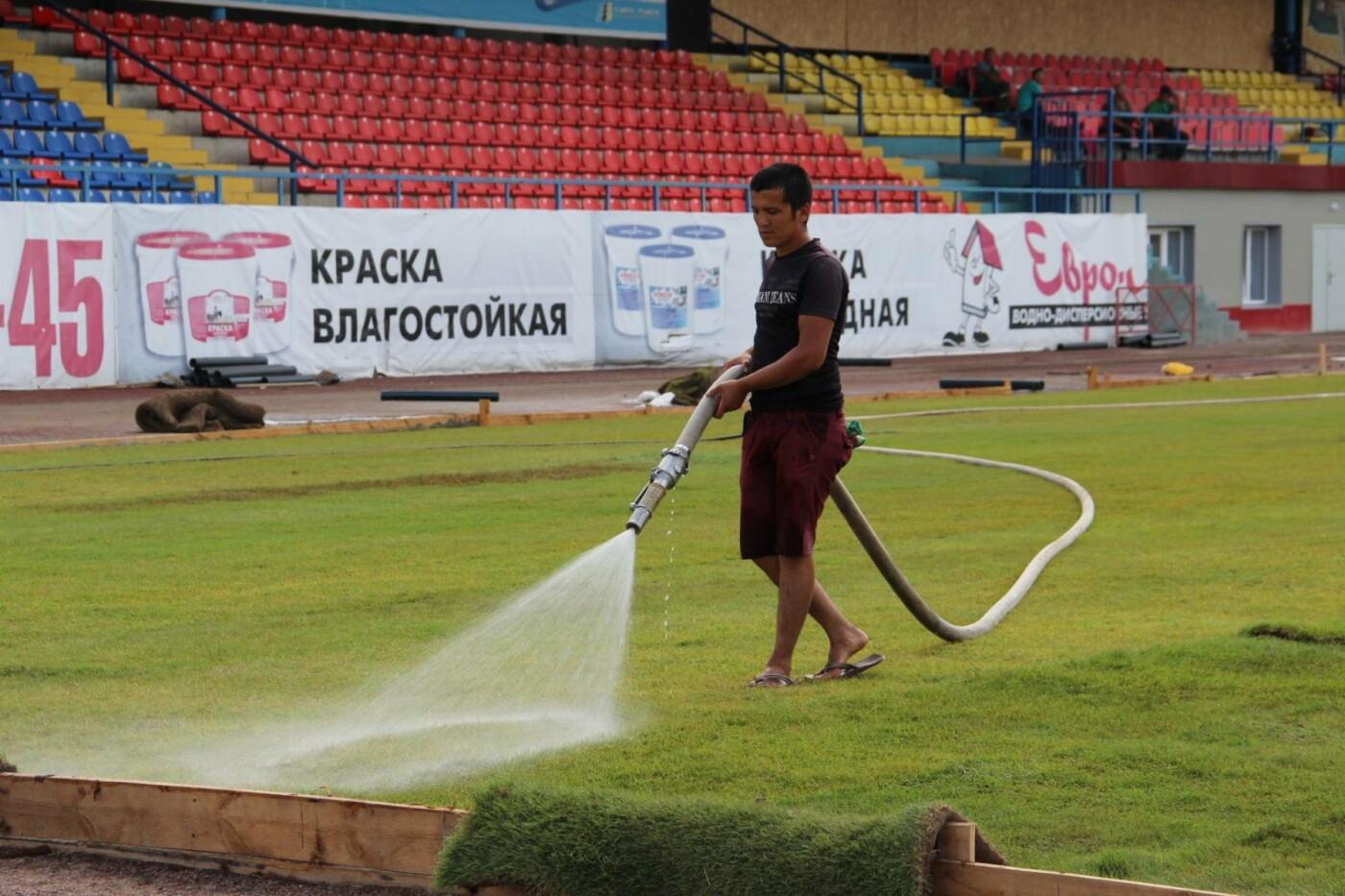 На тамбовском «Спартаке» укладывают газон, фото-3