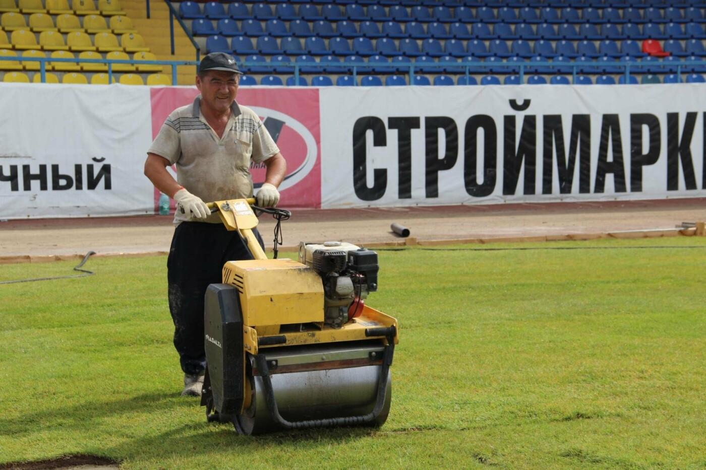 На тамбовском «Спартаке» укладывают газон, фото-2