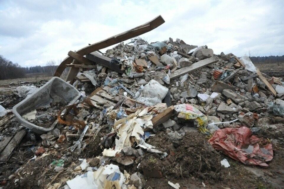 На Тамбовщине некому вывозить мусор, фото-2