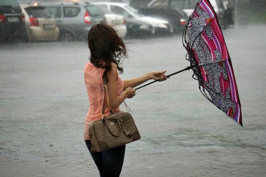 В Тамбовской области объявили штормовое предупреждение, фото-2