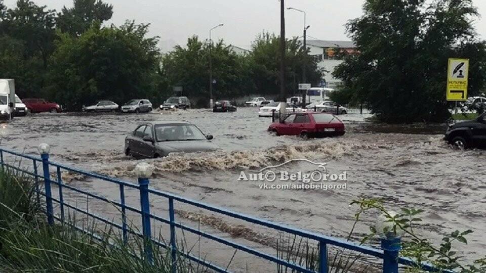 В Тамбовской области объявили штормовое предупреждение, фото-3
