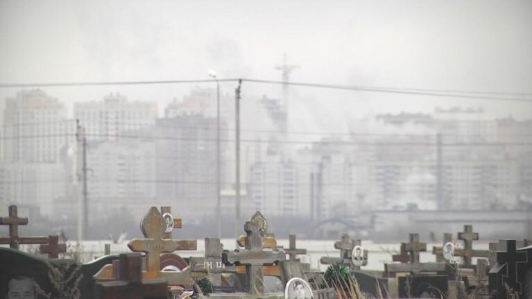 Картина дня Черноземья в обзоре Go68.ru, фото-3