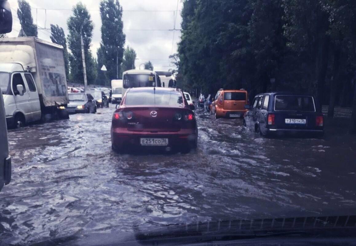 Картина дня Черноземья в обзоре Go68.ru, фото-2