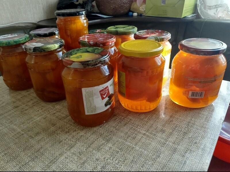 Тамбовчане собрали небывалый урожай абрикосов, фото-3