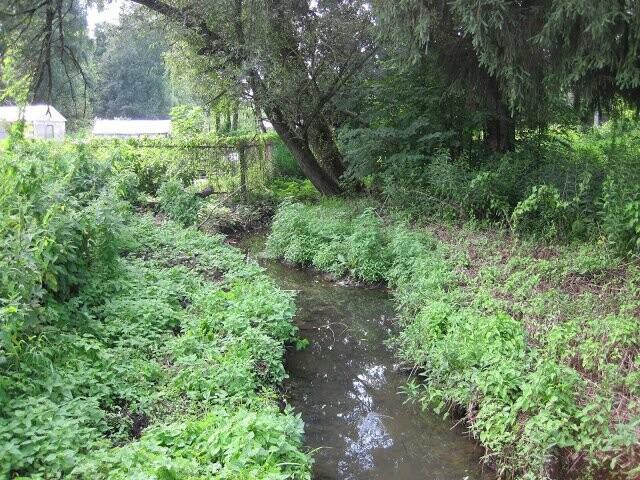 20-сантиметровый ручей топит тамбовское село, фото-1