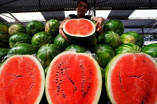 Роспотребнадзор проверил арбузы в Тамбове, фото-2