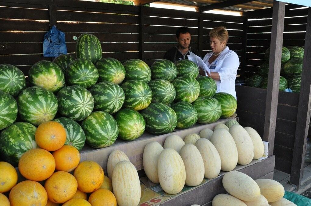Роспотребнадзор проверил арбузы в Тамбове, фото-1