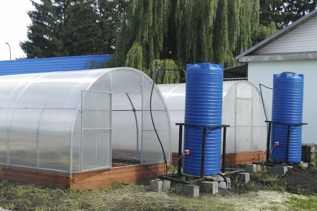 В ТГУ создадут супертеплицы для «Мичуринской долины», фото-1