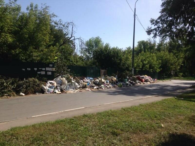 В Тамбове перед входом в парк Дружбы возникла огромная свалка, фото-1
