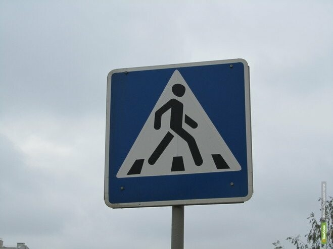 В Тамбове устроят «облаву» на пешеходов, фото-1