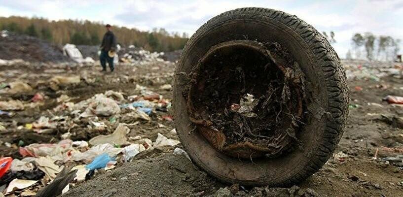 Тамбовская прокуратура не разрешает ТСК «выносить мусор», фото-1