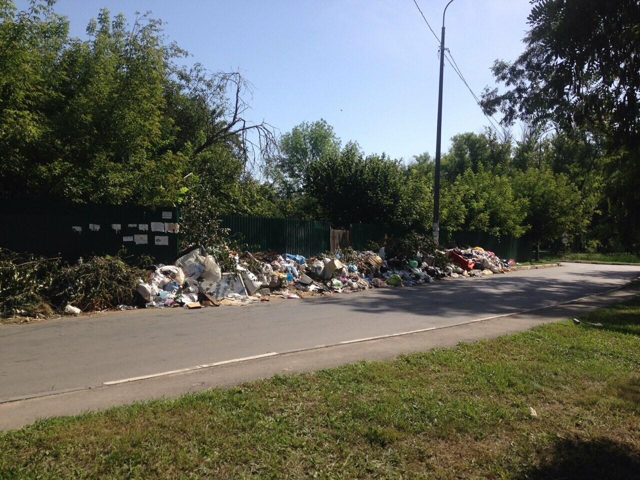 Тамбовских дачников обязали заняться вывозом мусора, фото-1