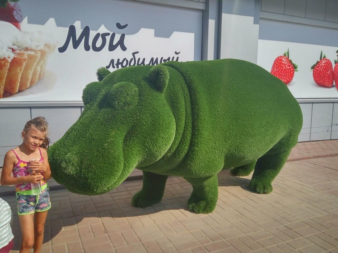 В Тамбове поселились зелёные бегемоты, фото-1