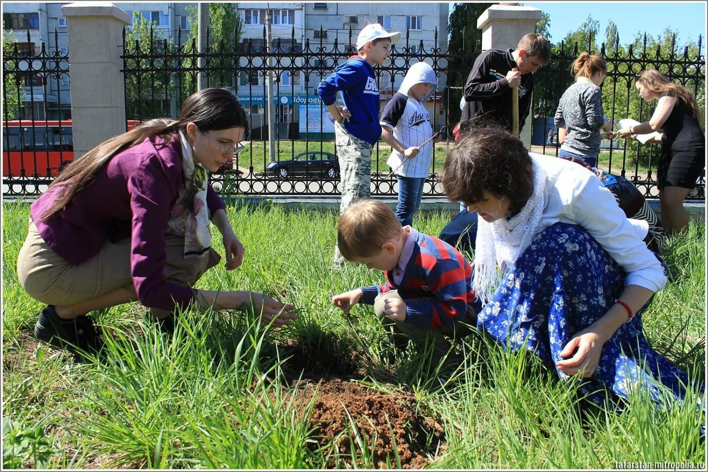 Тамбовчан научат озеленению, фото-1