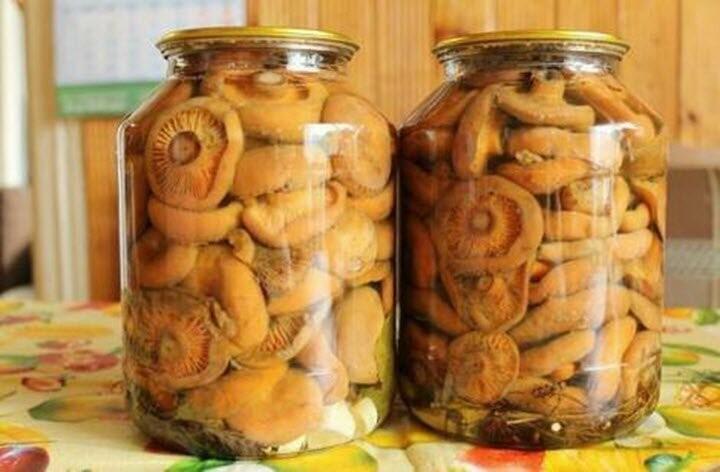 В Тамбове семья «заразилась» ботулизмом от солёных грибов, фото-1
