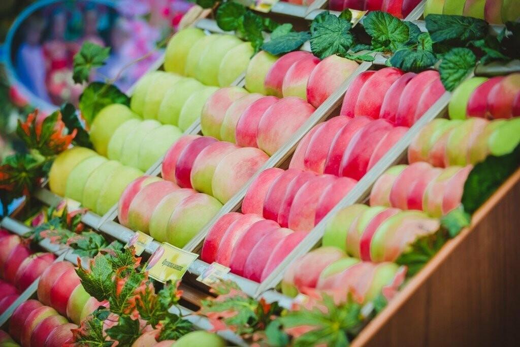 Фестиваль мичуринского яблока отметит юбилей , фото-2