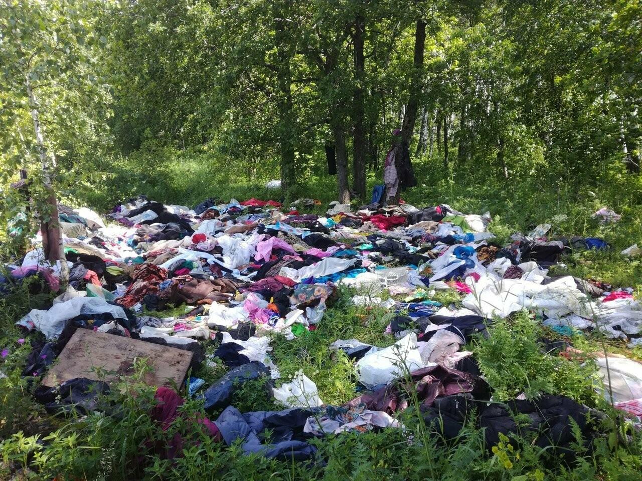 Тамбовские коровы питаются мусором со свалки, фото-1
