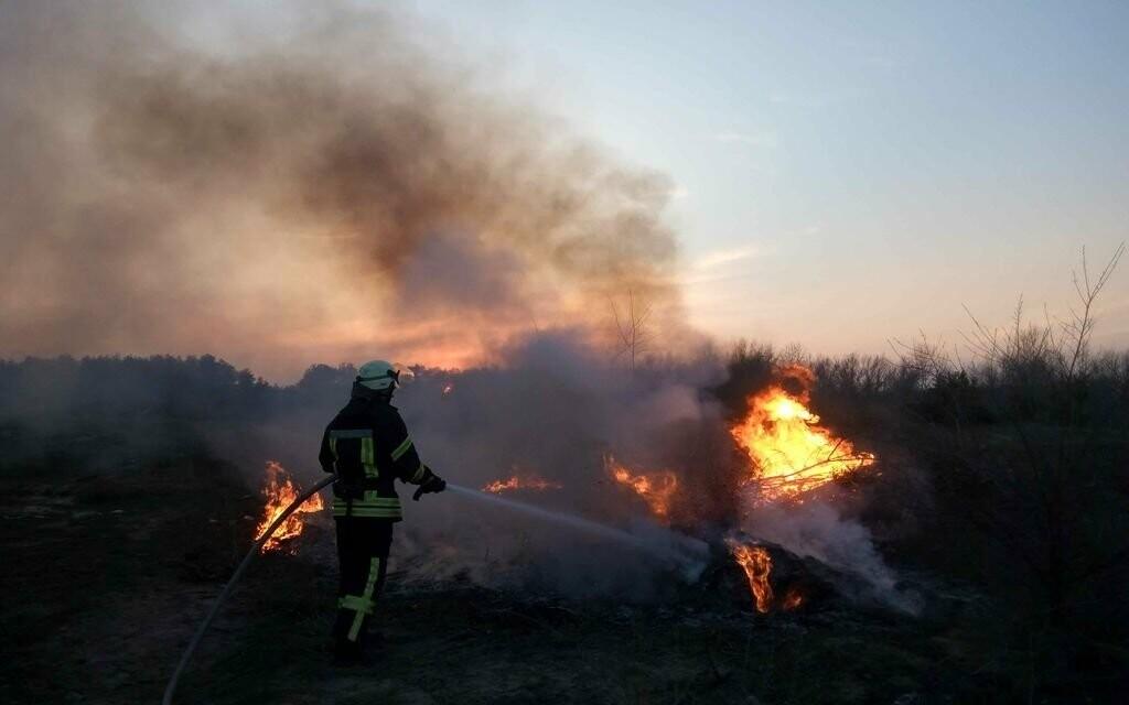 Брошены все силы, чтобы сберечь тамбовские леса от огня, фото-1