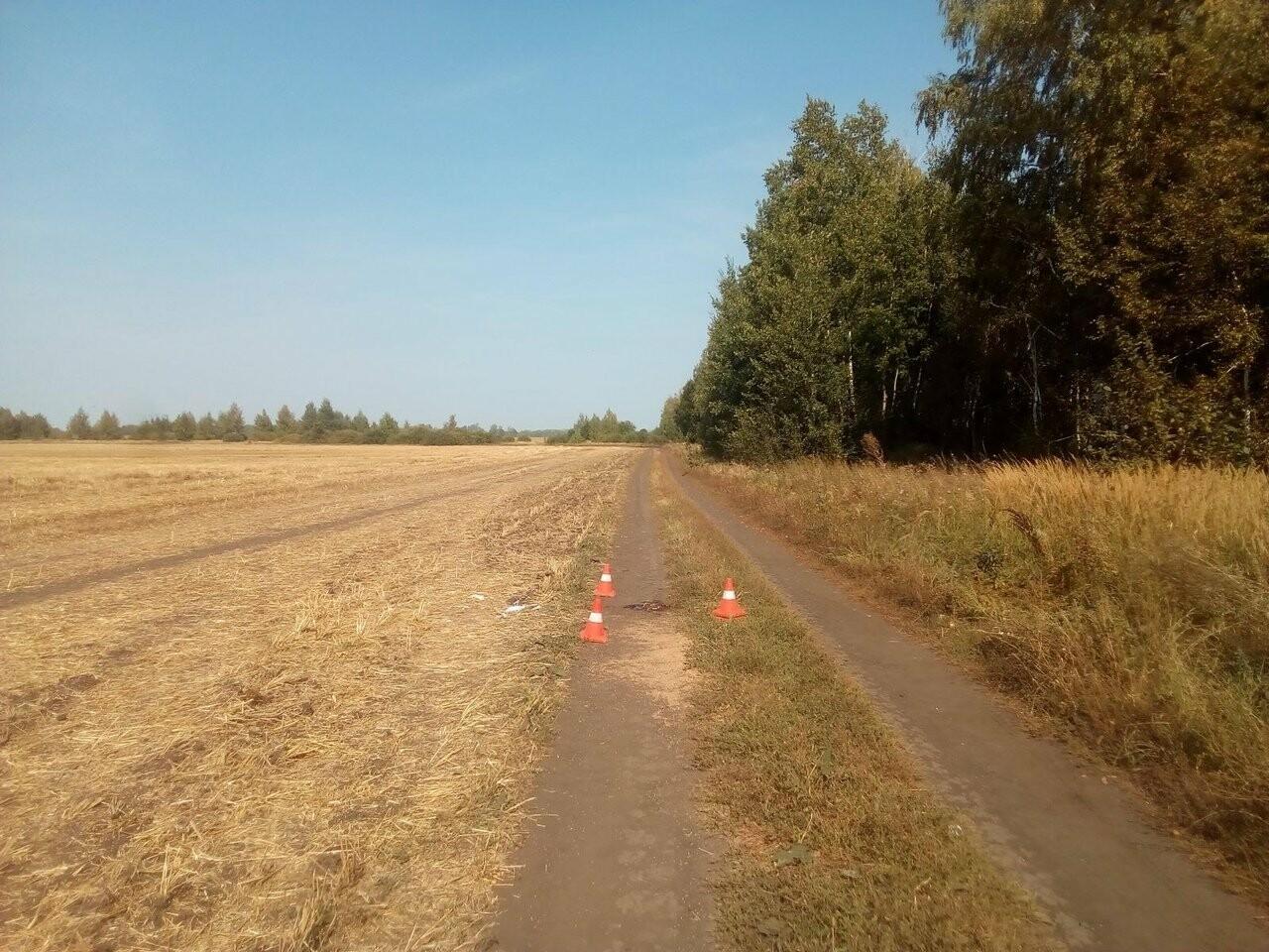 На Тамбовщине неизвестный водитель насмерть сбил мужчину, фото-1