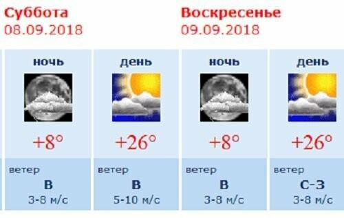 Тамбовчан ждут тёплые выходные без дождей, фото-1