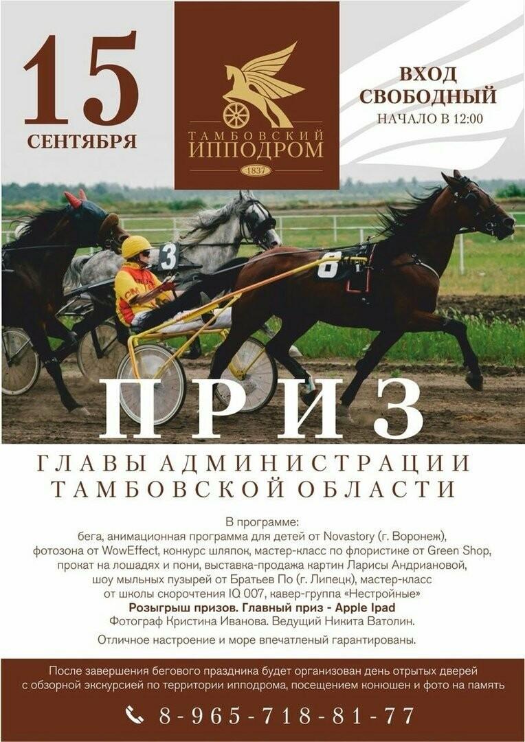 В Тамбове пройдут конноспортивные соревнования, фото-1