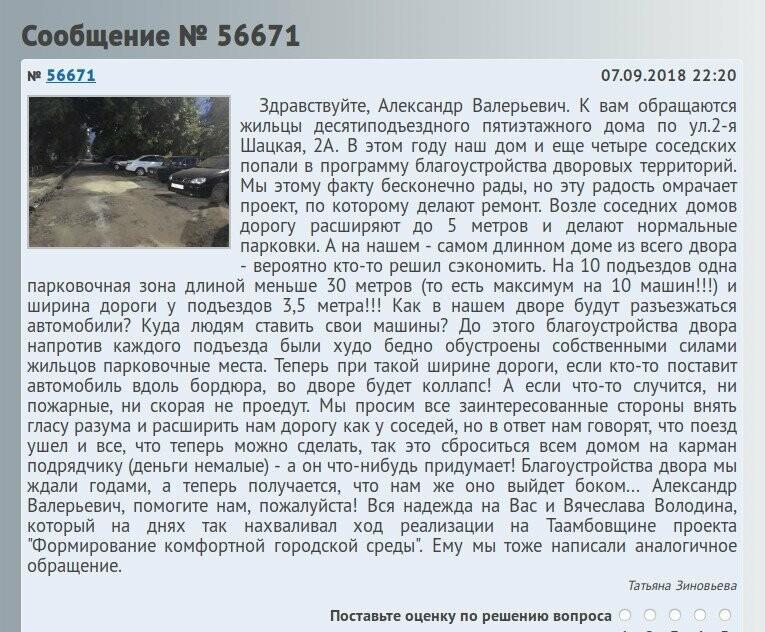 Тамбовчане протестуют против «Комфортной городской среды», фото-2
