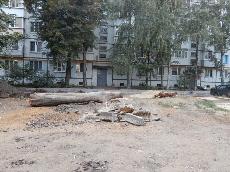 Тамбовчанам пообещали решить проблему с «некомфортным» двором, фото-1