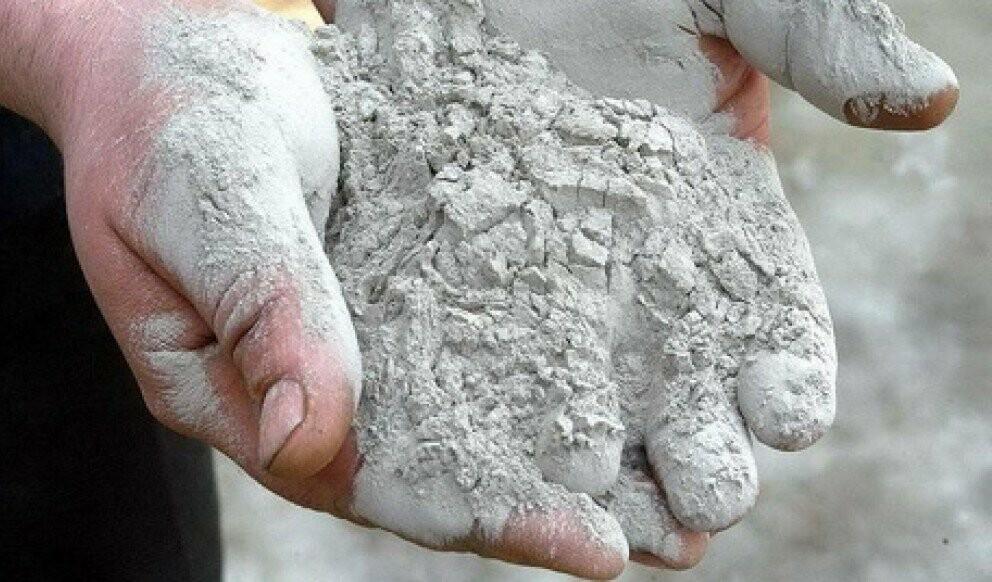 Тамбовский депутат построит цементный завод за 10 млн рублей, фото-2