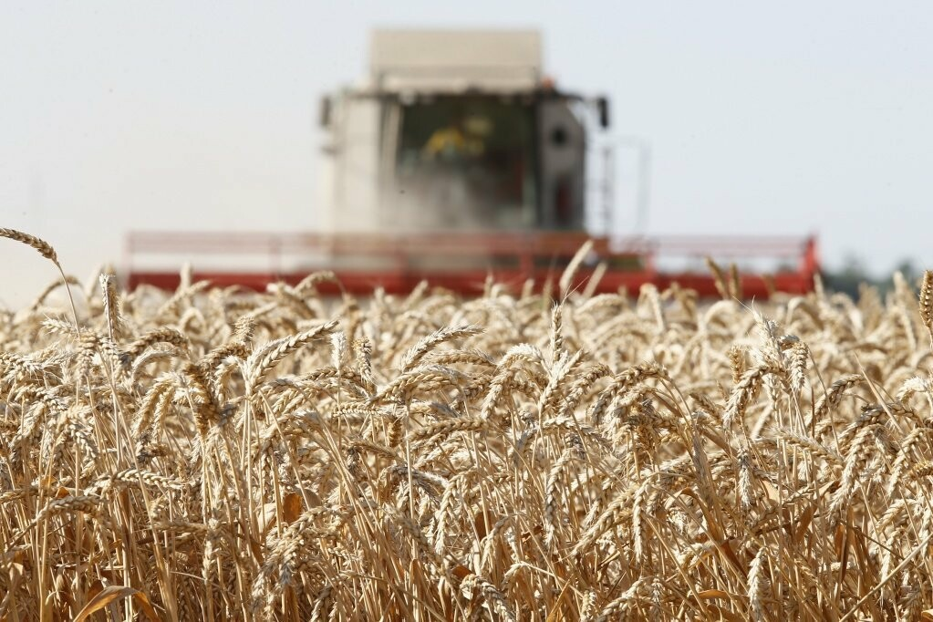 На развитие сельского хозяйства Тамбовщина получит почти миллиард рублей, фото-2