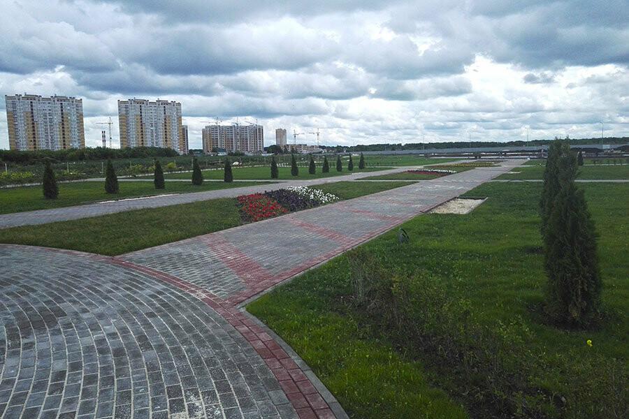 Тамбовские власти продолжат благоустройство Олимпийского парка на севере города , фото-2