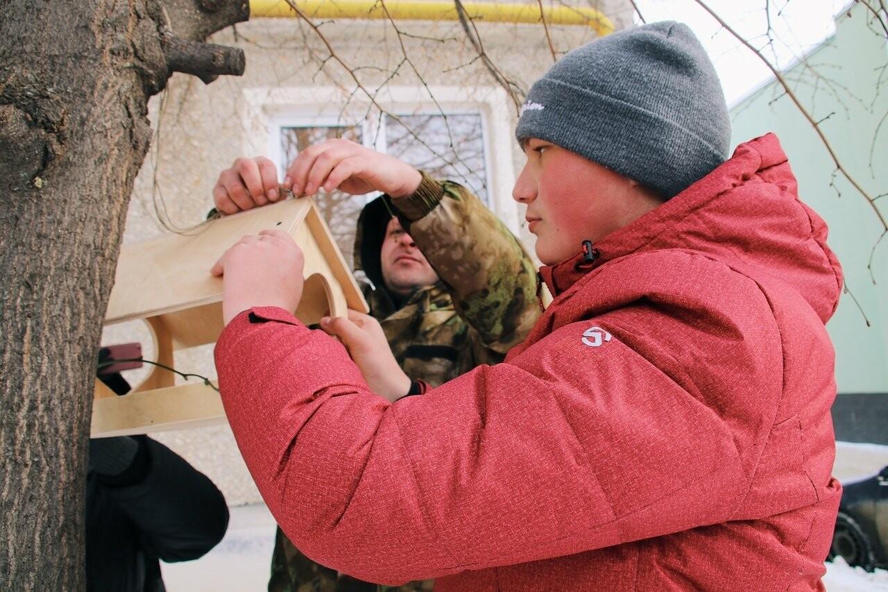 Во дворах тамбовской префектуры повесили кормушки с сердечками, фото-5