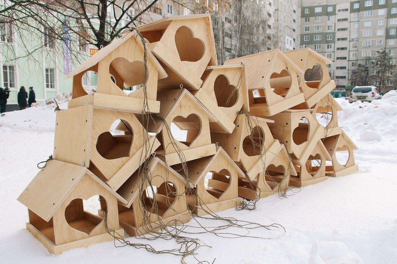 Во дворах тамбовской префектуры повесили кормушки с сердечками, фото-4