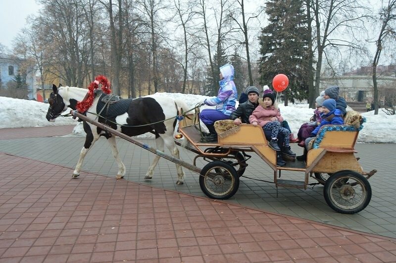 Тысячи тамбовчан отметили широкую Масленицу в Парке культуры, фото-10