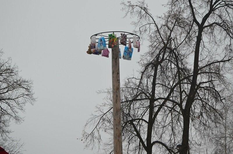 Тысячи тамбовчан отметили широкую Масленицу в Парке культуры, фото-21